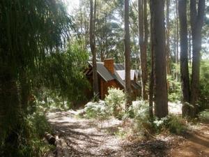 比德魯普樓別墅酒店(Beedelup House Cottages)