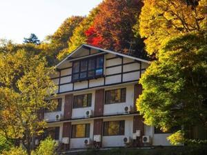 蓼科溫泉親湯酒店(Tateshina Onsen Hotel Shinyu)