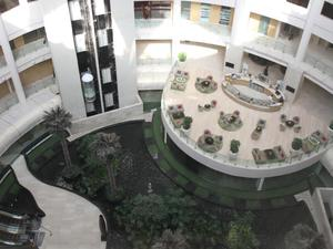 新德里德瓦卡麗笙藍光酒店(Radisson Blu Hotel New Delhi Dwarka)