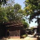 叢林環境生存訓練營杰斯特宿舍(Jungle Environment Survival Training Jest Camp Dormitory)