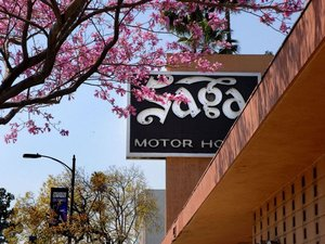 薩伽汽車旅館(Saga Motor Hotel)