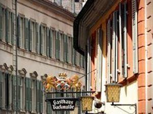 蓋斯豪斯拜科穆德酒店(Hotel & Gasthaus Backmulde)