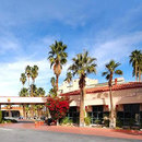 舒適酒店-棕櫚泉市區(Comfort Inn Palm Springs Downtown)