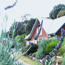 東礁別墅酒店(Eastern Reef Cottages)