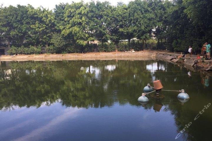 鱼塘排水口设计样板
