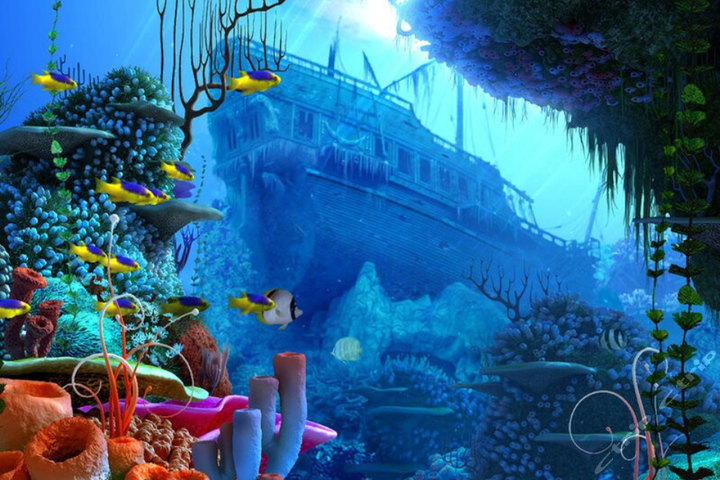 罗源湾海洋世界—儿童