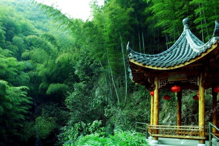 杭州超山风景区景点都有什么?杭州超山风景区介绍