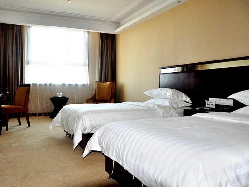 喀什丽豪大酒店(商务标准间)