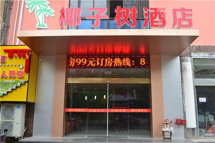 连云港椰子树酒店