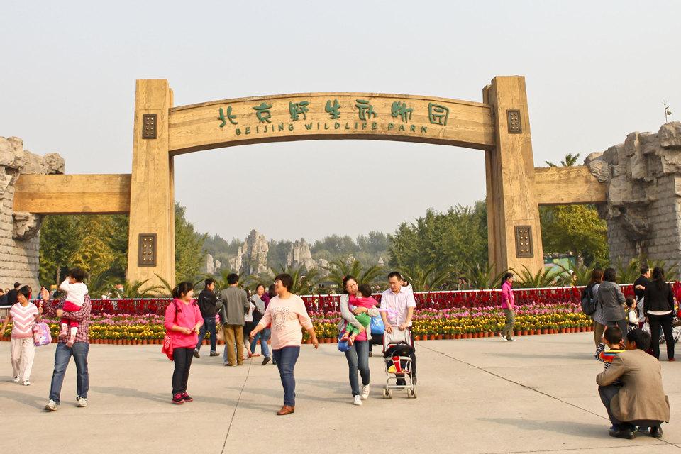 廊坊固安福朋喜来登酒店(舒适房+北京动物园)