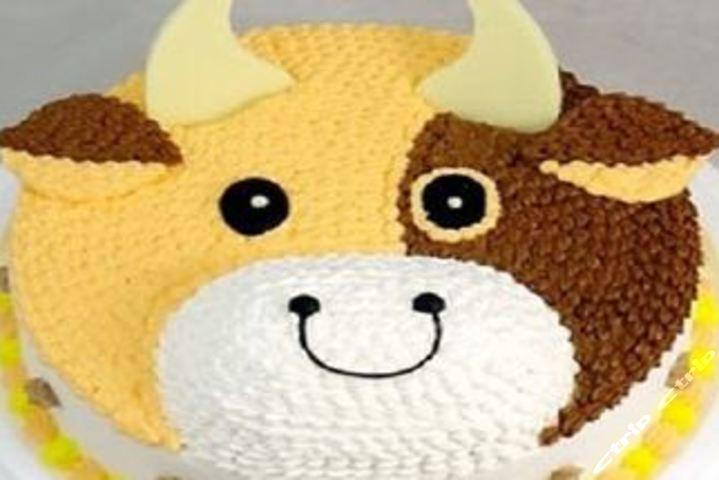 幸福西点                     仅售45元,价值58元8英寸小牛蛋糕