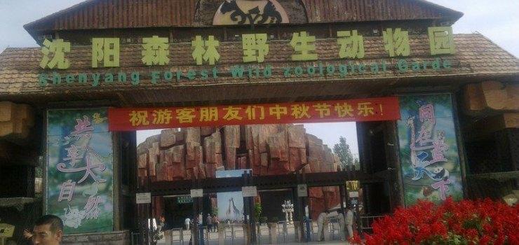 沈阳冰川动物园(门票1张)