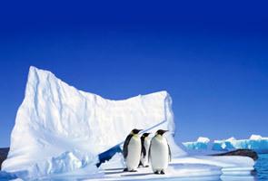 世界之巅南极