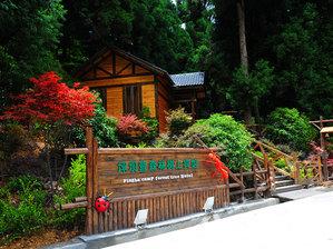 咸豐坪壩營森林樹上賓館