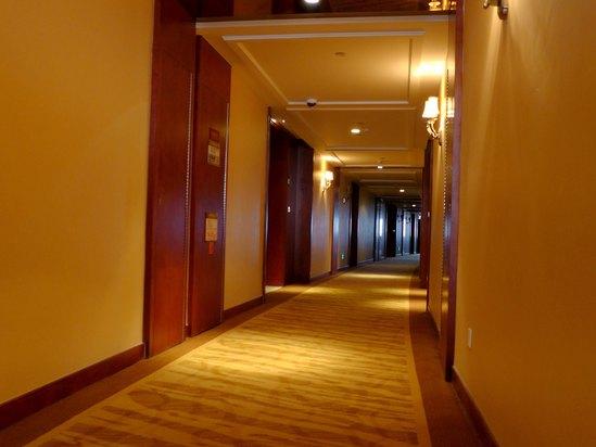 室内装饰为简约欧式风格