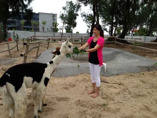 漳浦翡翠湾海景度假酒店
