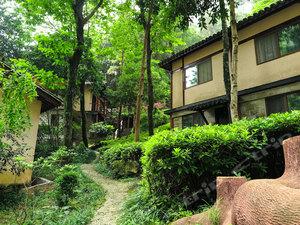 雁蕩山森林公園度假名邸
