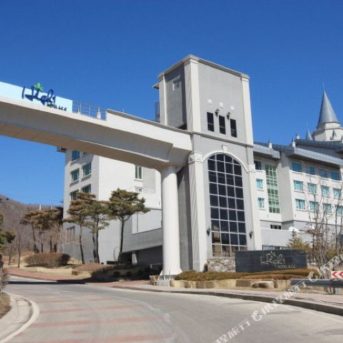 하이원 팰리스 호텔 & CC(하이원 호텔)