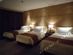 宜昌馨岛国际酒店预订,宜昌馨岛国际酒店价格,点评,电话查询 携程