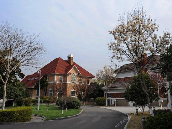 每8幢木结构或钢结构的欧式单体别墅组成一个岛屿