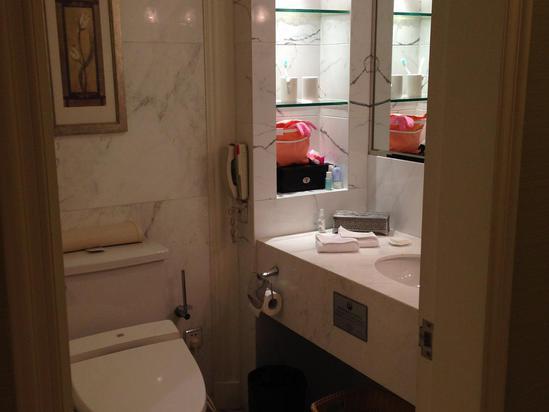 马桶带清洗功能.整体装修是欧式风格.