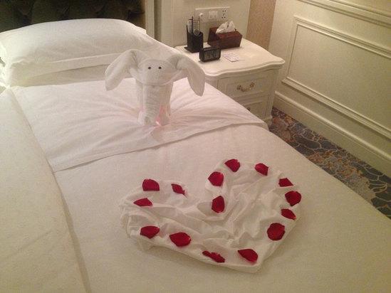 浴巾折的小动物
