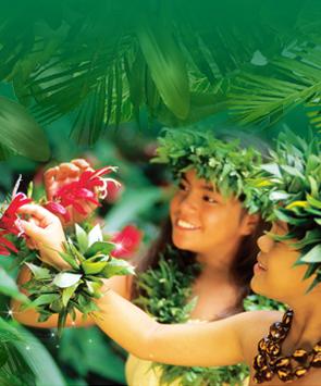 热恋夏威夷