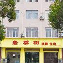 南鄭老茶樹商務賓館
