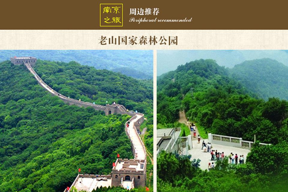 南京老山森林公园好玩吗?图片