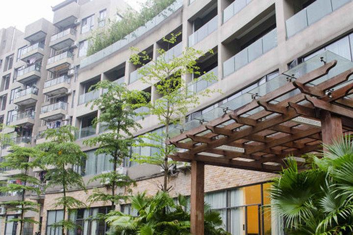 深圳桐林高级公寓(原桐林酒店)图片
