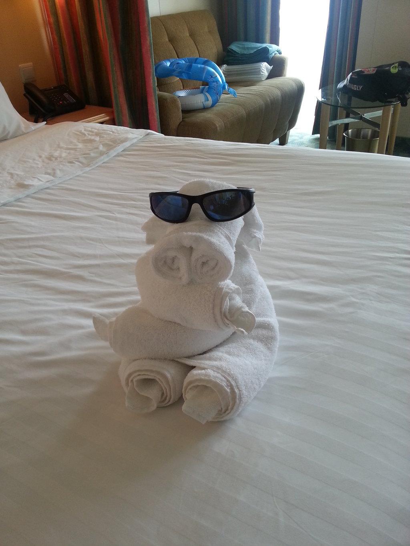 毛巾折叠成不同的小动物