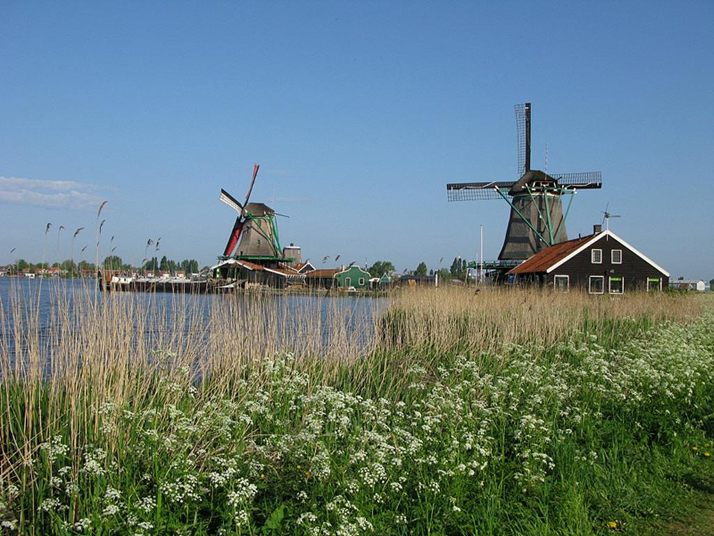 【i旅行】春天的脚步从荷兰开始