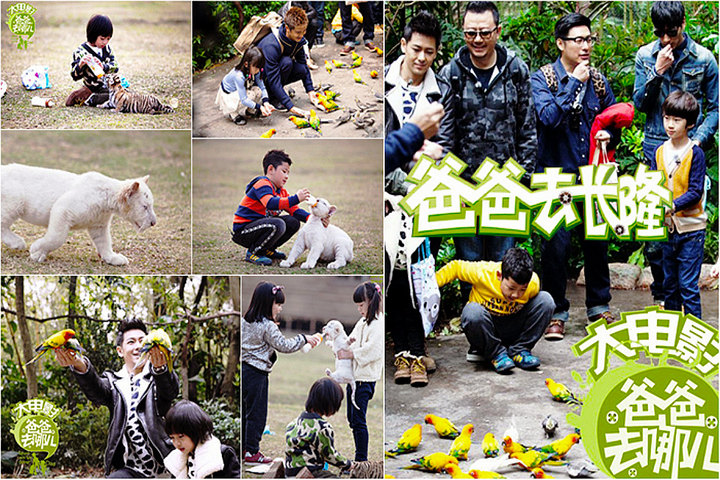 【广州长隆野生动物园团购】广州长隆野生动物园