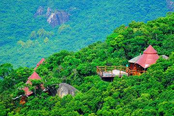 【三亚】亚龙湾热带天堂森林公园图片