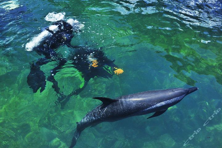三亚分界洲岛会所-海岛观海别墅 潜水套餐; 三亚分界洲岛海钓会所