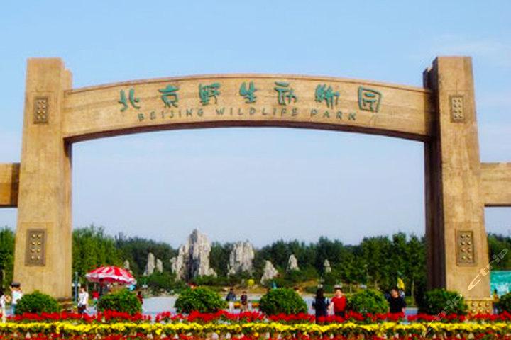 19折】北京北京龙熙温泉(怡景标间 野生动物园)