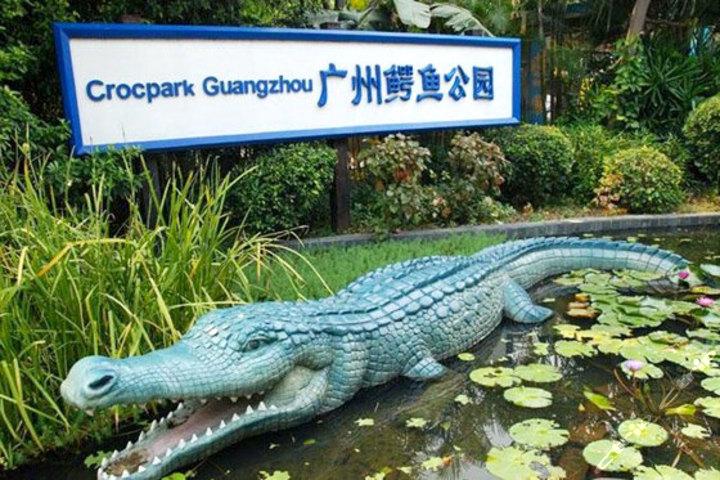 广州鳄鱼公园地址_广州鳄鱼公园掠影图片