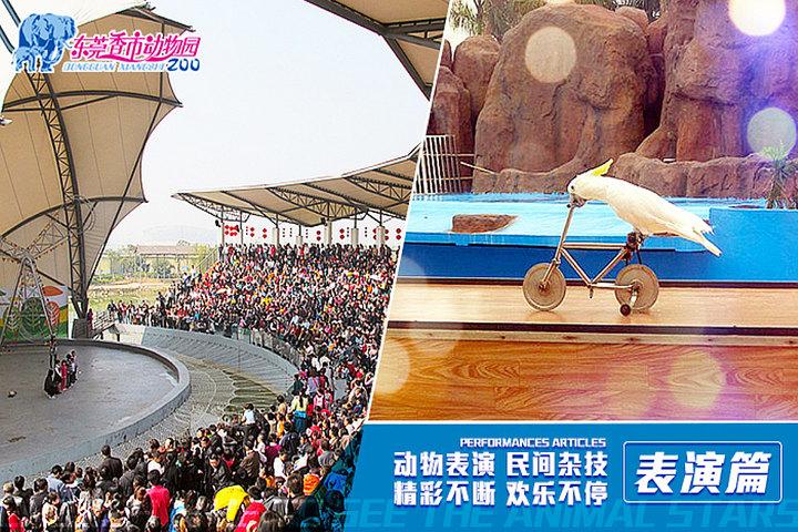 东莞香市动物园(成人套票)团购