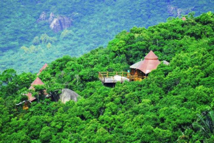 三亚亚龙湾热带天堂森林公园(门票)图片