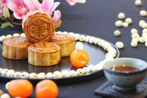 广州东方宾馆精装蛋黄白莲蓉月饼60gx8个