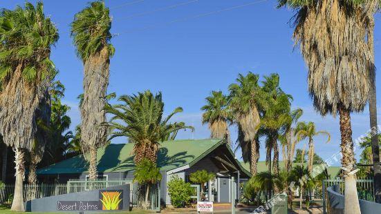 Desert Palms Alice Spring