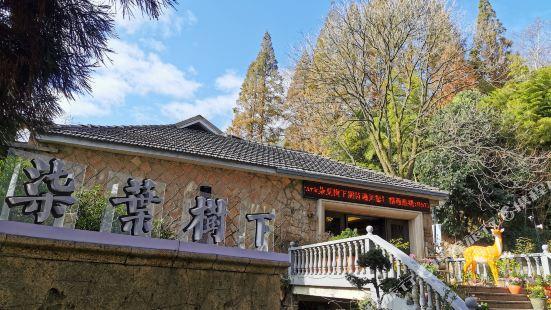 莫幹山柒葉樹下酒店