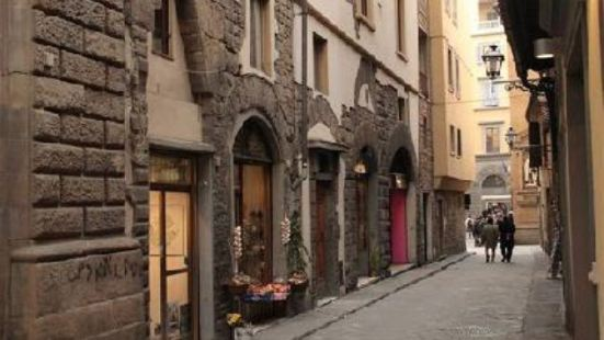 La Signoria di Firenze