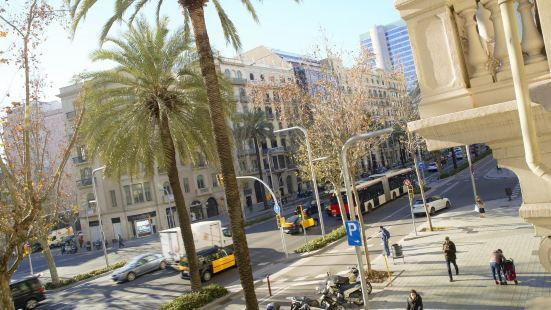 Kiwidestiny Barcelona City