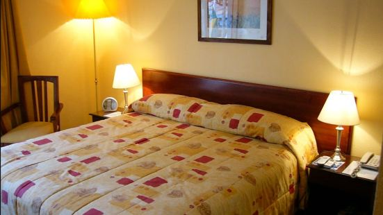 阿爾卡拉德爾里奧酒店