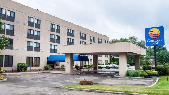 賓厄姆頓舒適酒店