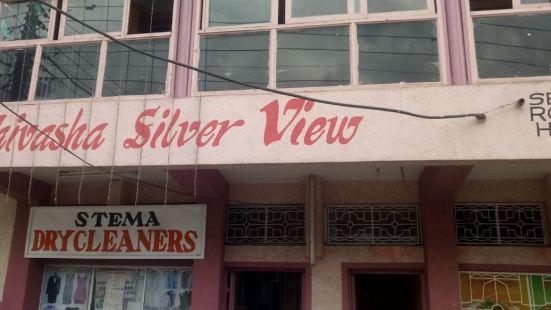 Silver View Lodge