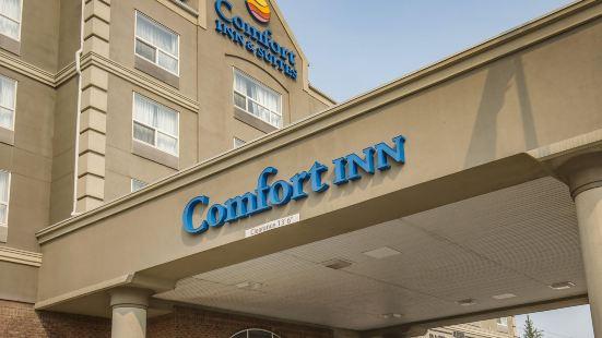 Comfort Inn & Suites South
