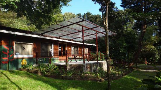 Los Pinos Cabanas y Jardines