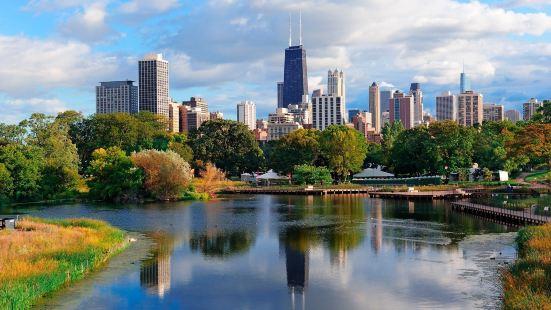 앰배서더 시카고
